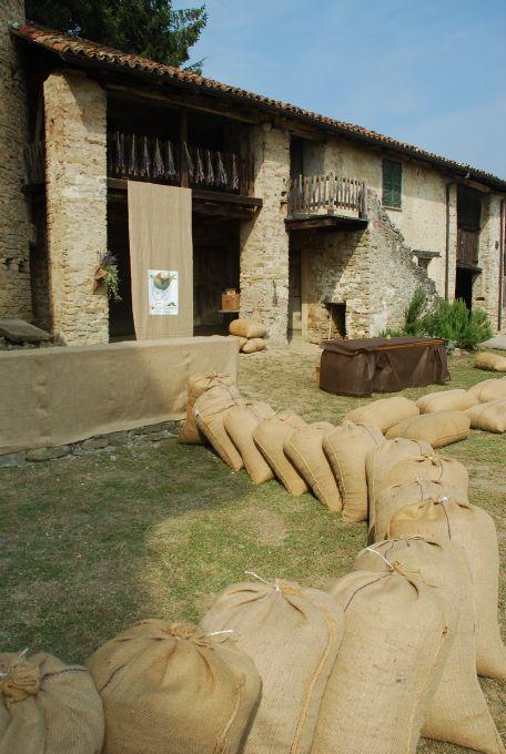 Nocciolando in Alta Langa 2011